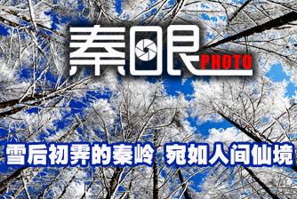 [秦眼]雪後初霽的秦嶺 宛如人間仙境