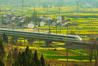 陜西漢中:開往春天的西成高鐵