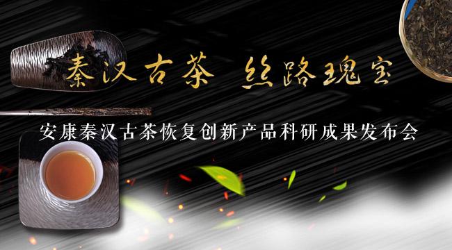 安康秦漢古茶恢復創新産品科研成果發布會