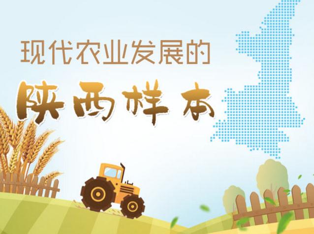 現代農業發展的陜西樣本