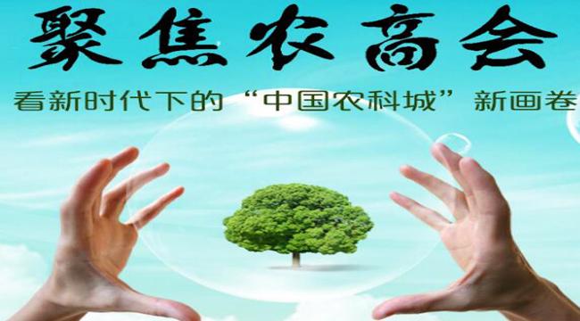 """聚焦農高會:看新時代下的""""中國農科城""""新畫卷"""
