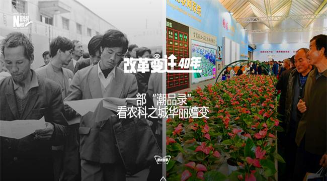 """[改革變遷40年]一部""""潮品錄""""看農科之城華麗嬗變"""