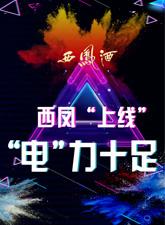 """西鳳""""上線"""",""""電""""力十足"""