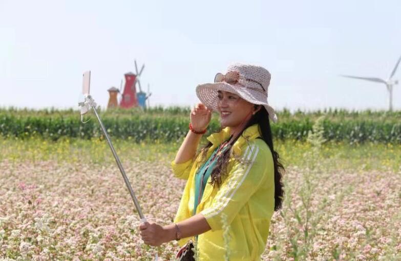 定邊紅花蕎麥文化旅遊節開幕