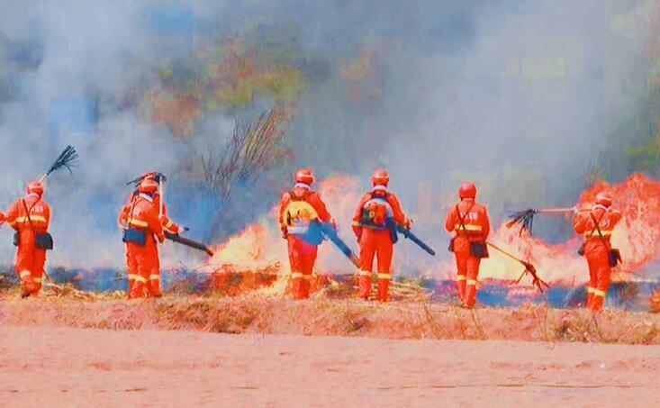 森林草原發生火災怎麼辦?